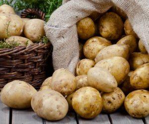 Ziemniak, król spiżarni